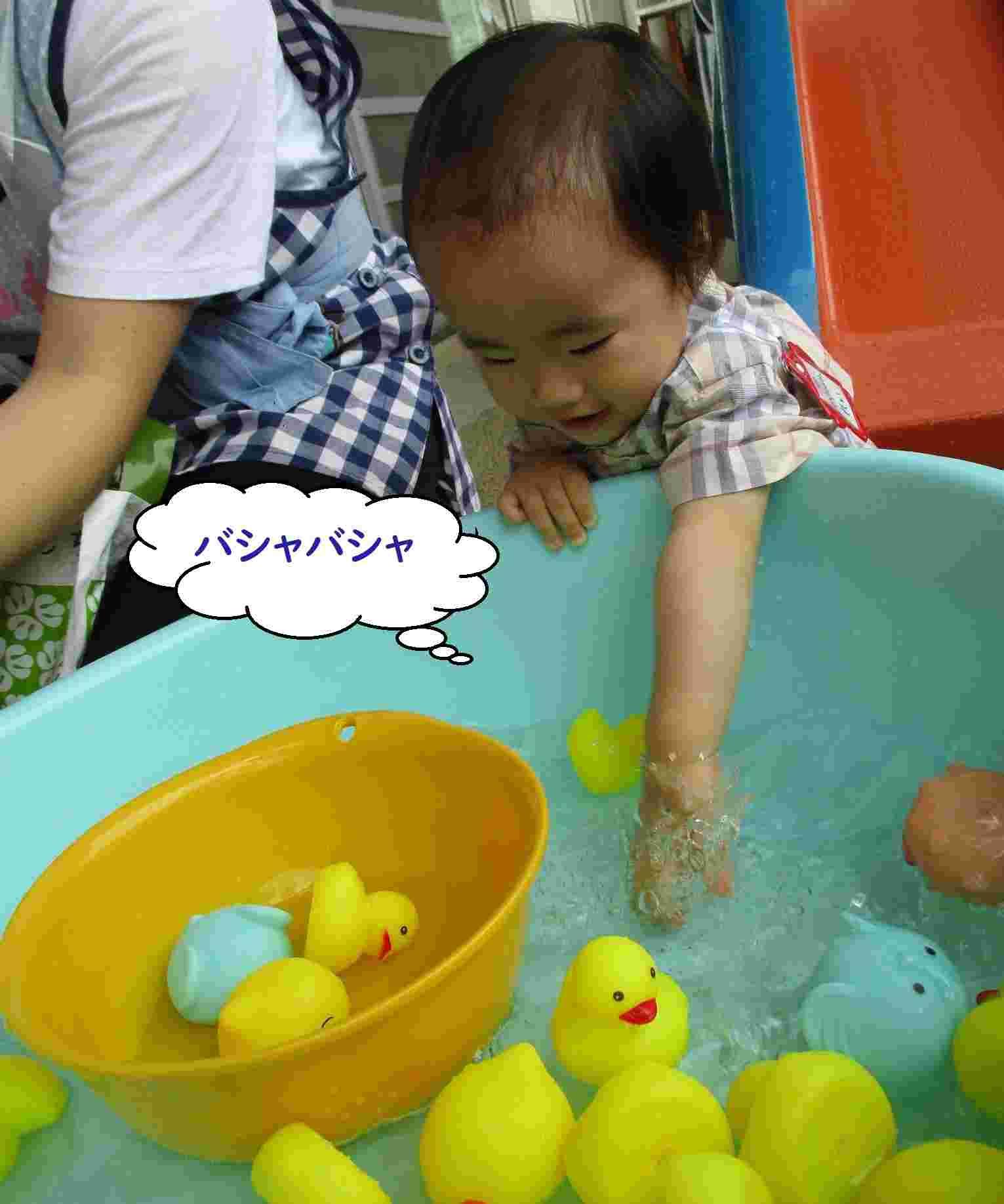 すくいどり 水の中に手をいれて遊ぶ男の子
